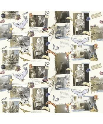 Tissu coton Harry Potter - Souvenirs de films